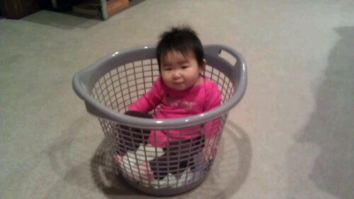 Basket Chariot